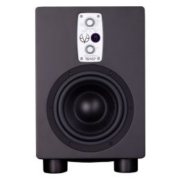 Eve Audio TS110 (B-Stock)