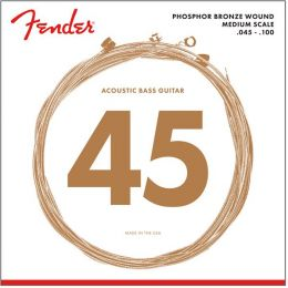 Fender Acoustic Bass 7060